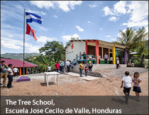 TreeSchool-1
