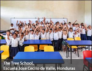 TreeSchool-2