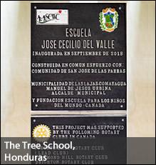 TreeSchool-3